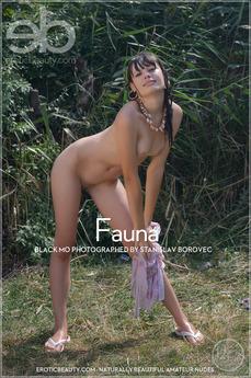 EroticBeauty - Black MO - Fauna by Stanislav Borovec