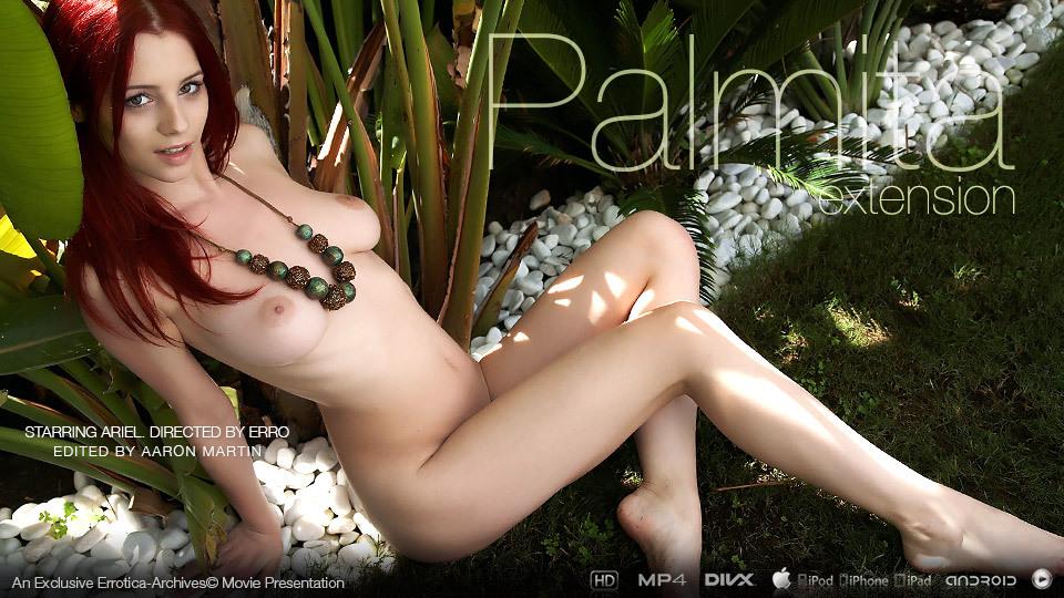 Palmita II
