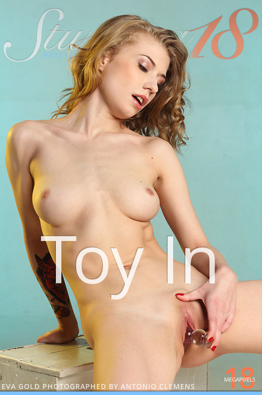 Toy In