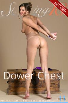 Dower Chest