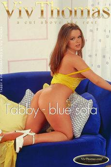 Tabby - blue sofa
