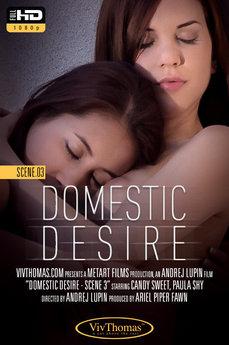 Domestic Desire Scene 3