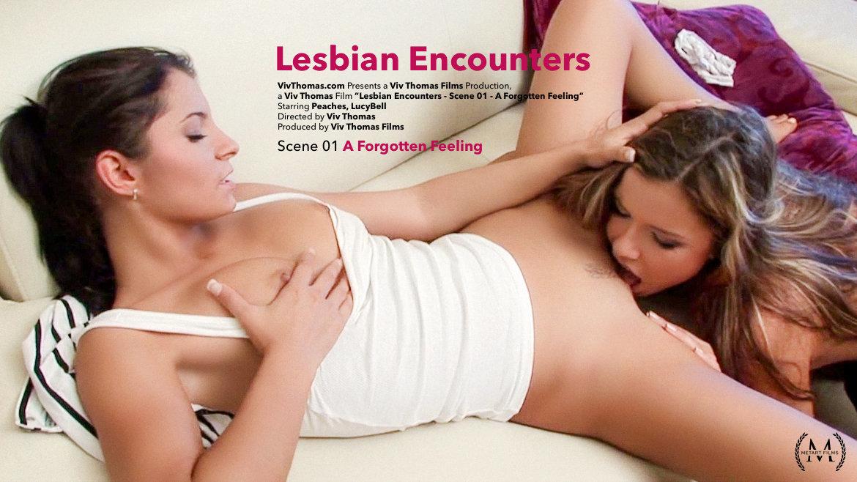 Lesbian Encounters Part 1