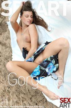 melena_gorgona