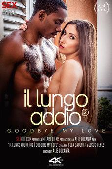 Il Lungo Addio 2 - Goodbye My Love