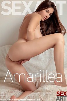 Amarillea