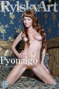 Pyonaigo