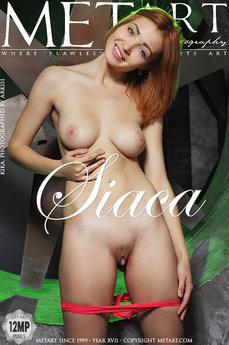 Siaca