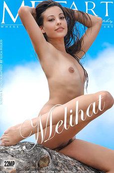 Lorena B Metart