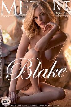 Blake Bartelli Metart