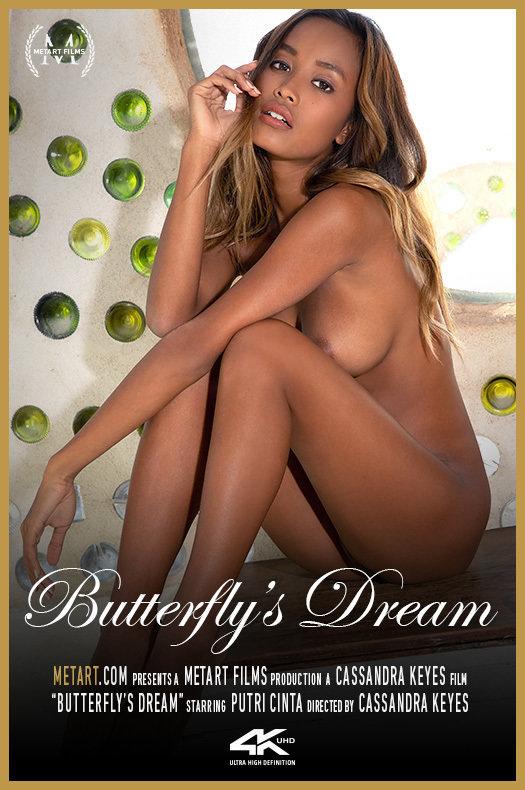 Butterfly's Dream