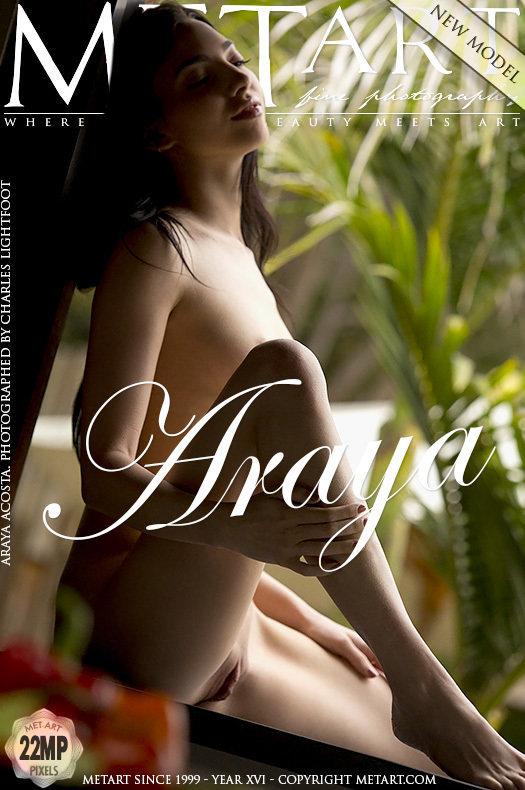 Presenting Araya Acosta