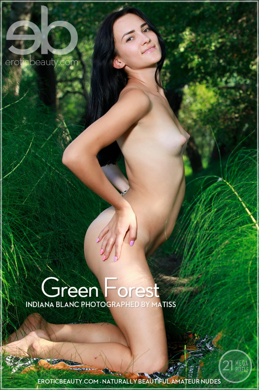 Green Forest featuring Indiana Blanc by Matiss