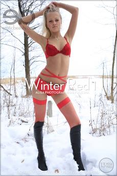Winter Red 1