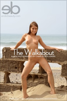 The Walkabout