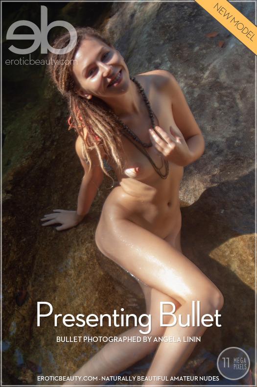 Presenting Bullet