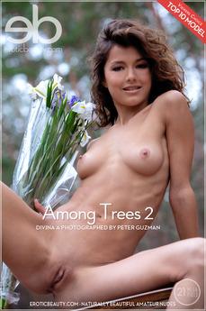 Among Trees 2