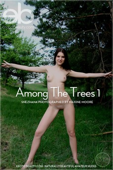 Among The Trees 1