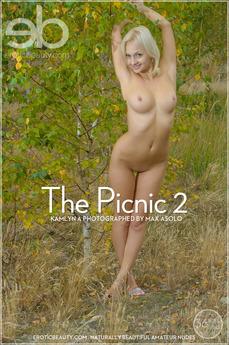 The Picnic 2
