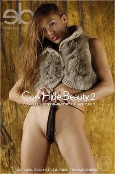 Cow Hide Beauty 2