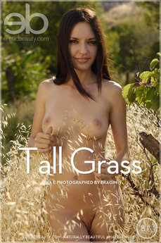 EB Tall Grass
