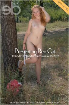 """""""Red Cat"""""""