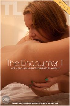 The Encounter 1