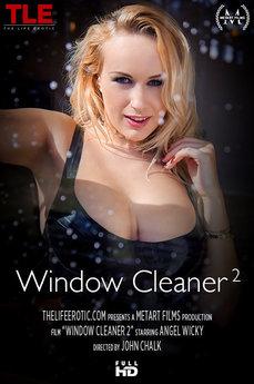 Window Cleaner 2