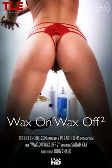 Wax On Wax Off 2
