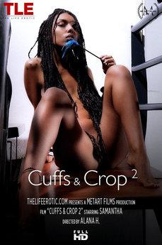 Cuffs & Crop 2