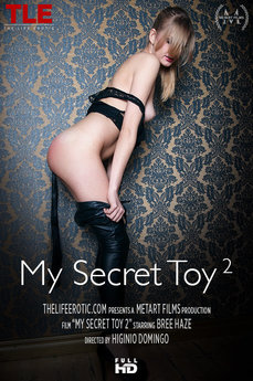 My Secret Toy 2