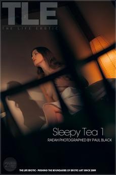 """""""Sleepy Tea 1"""""""