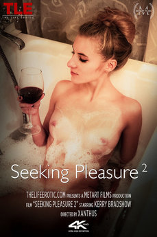 Seeking Pleasure 2