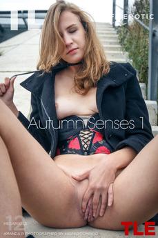 Autumn Senses 1
