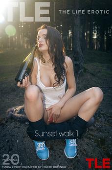 Sunset walk 1