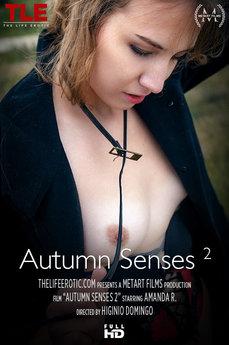 Autumn Senses 2