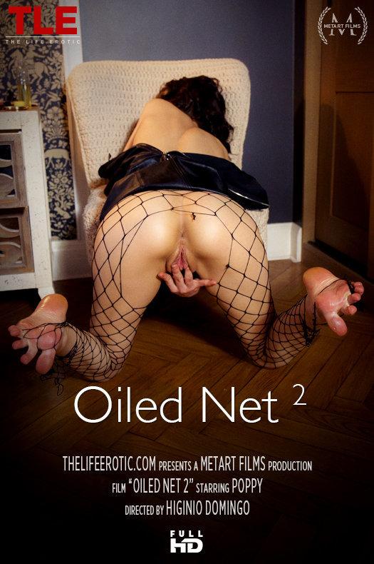 Oiled Net 2