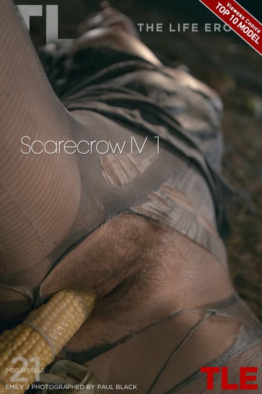Scarecrow IV 1