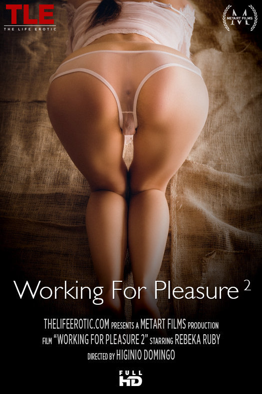 Working For Pleasure 2