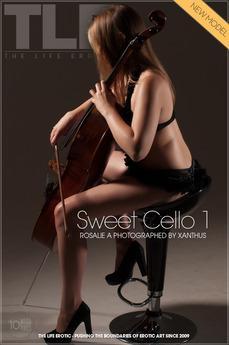 Sweet Cello 1