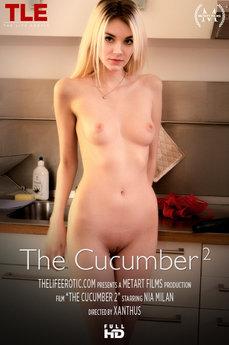 The Cucumber 2