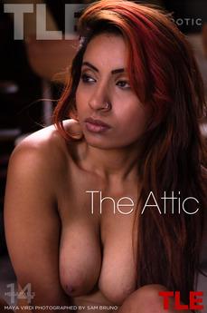 """""""The Attic"""""""