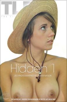 Hidden 1