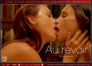Au revoir - The Life Erotic Movies