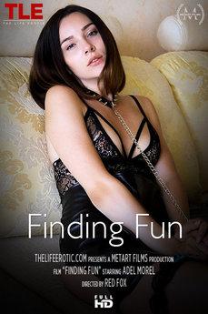 Finding Fun