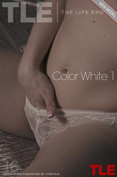 Color White 1