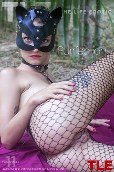 Purrfection