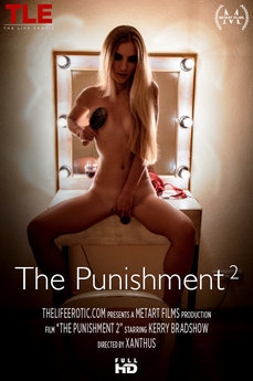 The Punishment 2