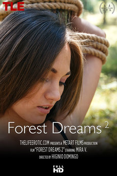 Forest Dreams 2