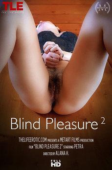 Blind Pleasure 2